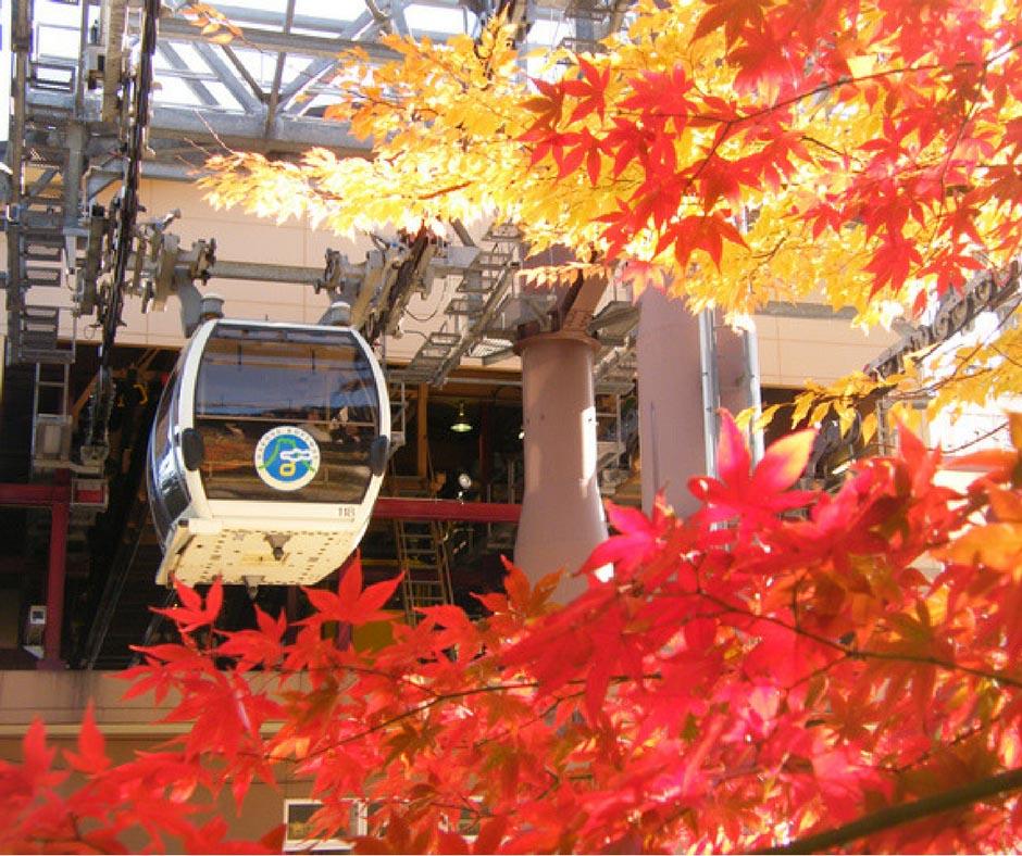 กระเช้าที่มีชื่อเสียงที่สุดในย่านนี้ Hakone Ropeway