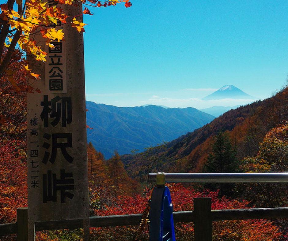 ใบไม้เปลี่ยนสีฮาโกเน่ ที่ Daikanzan