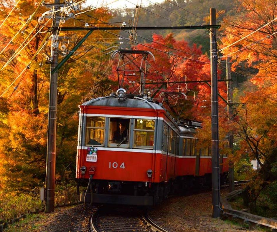 นั่งรถไฟชมวิว ใบไม้เปลี่ยนสีฮาโกเน่