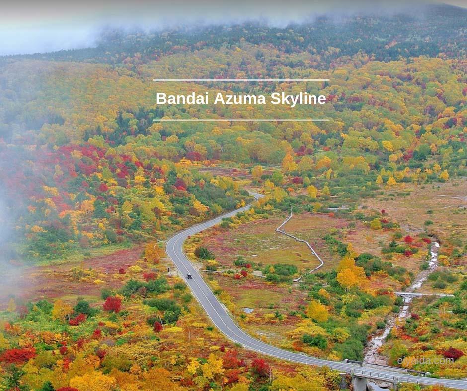 ใบไม้เปลี่ยนสี ที่ Azuma