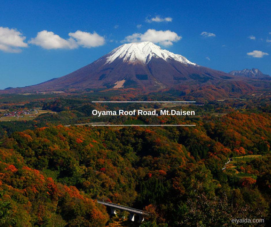 ใบไม้เปลี่ยนสี ที่ Mt.Densai