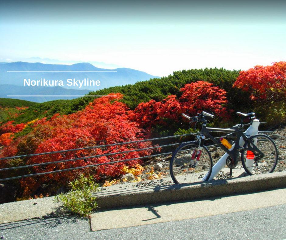 ใบไม้เปลี่ยนสี ที่ Norikura