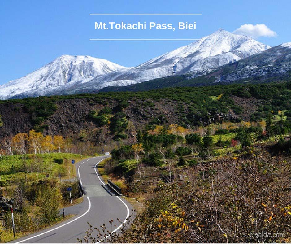 ใบไม้เปลี่ยนสี ที่ Mt.Tokachi Biei