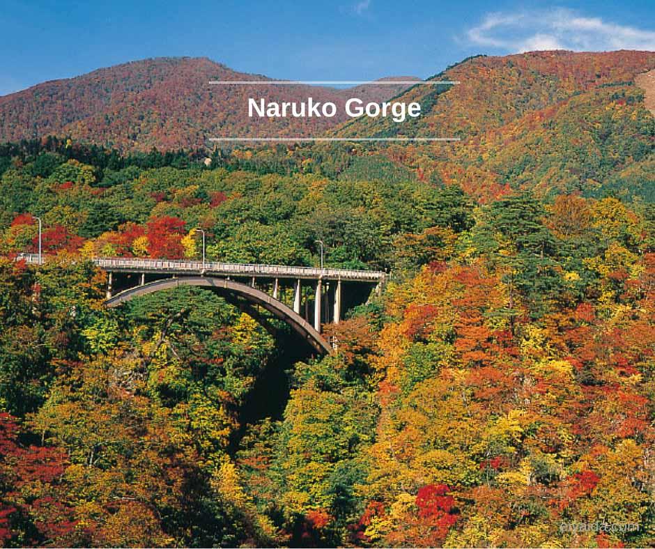 ใบไม้เปลี่ยนสี ที่หุบเขา Naruko
