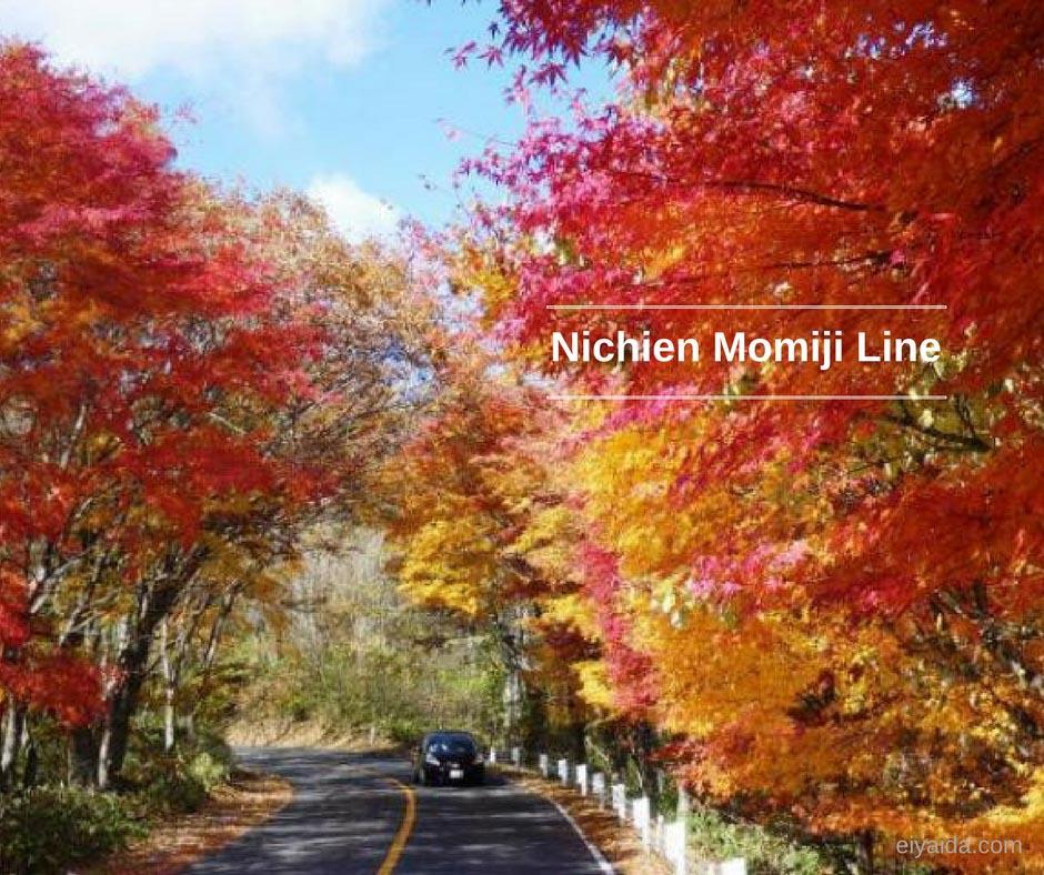 ใบไม้เปลี่ยนสี ที่ Tochigi