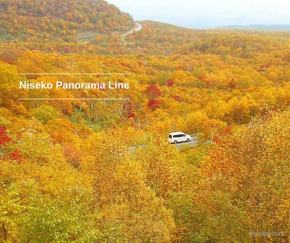 ใบไม้เปลี่ยนสี ที่ Niseko