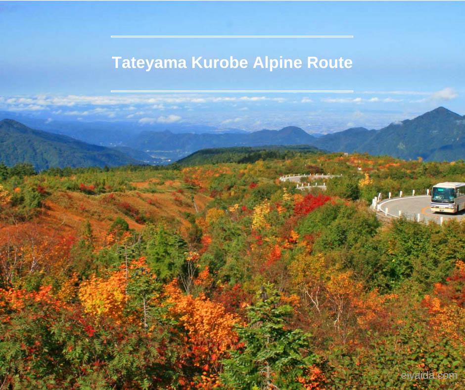 ใบไม้เปลี่ยนสี ที่ Japan Alps