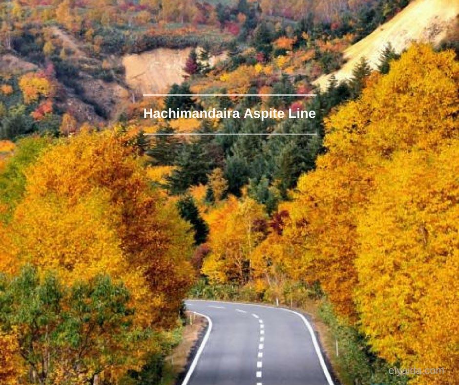 ใบไม้เปลี่ยนสี ที่ Hachimantai