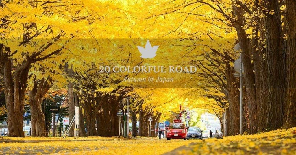 ใบไม้เปลี่ยนสีญี่ปุ่น