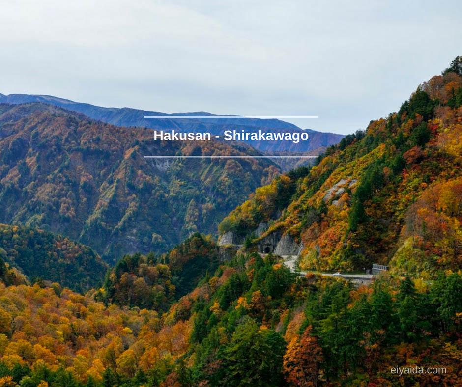 ใบไม้เปลี่ยนสี ที่ Shirakawago