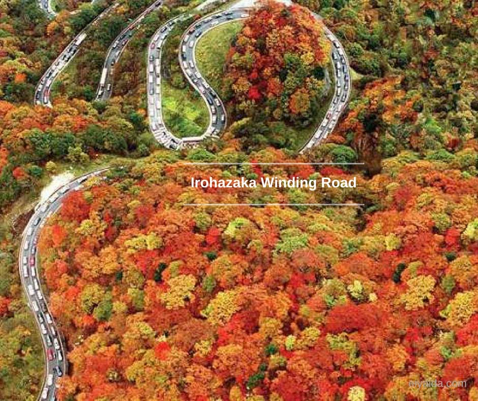ใบไม้เปลี่ยนสี ที่ Irohazaka