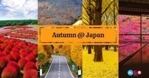 พยากรณ์ใบไม้เปลี่ยนสีญี่ปุ่น