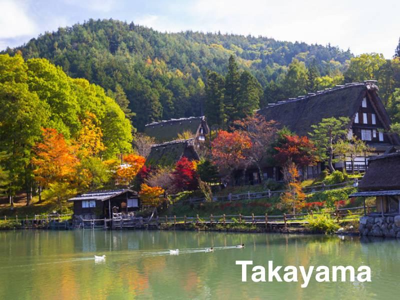 ใบไม้เปลี่ยนสี Takayama