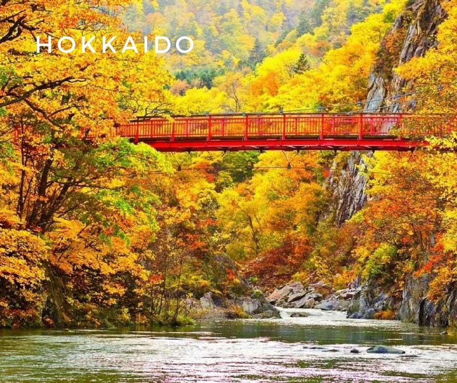 พยากรณ์ใบไม้เปลี่ยนสี Hokkaido