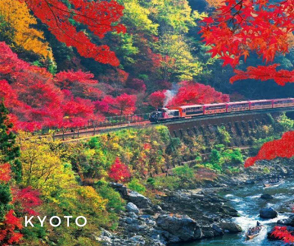 พยากรณ์ใบไม้เปลี่ยนสี Kyoto