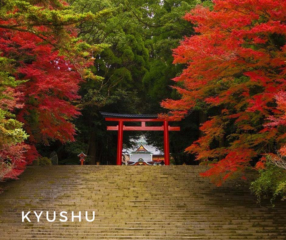 พยากรณ์ใบไม้เปลี่ยนสี Kyushu