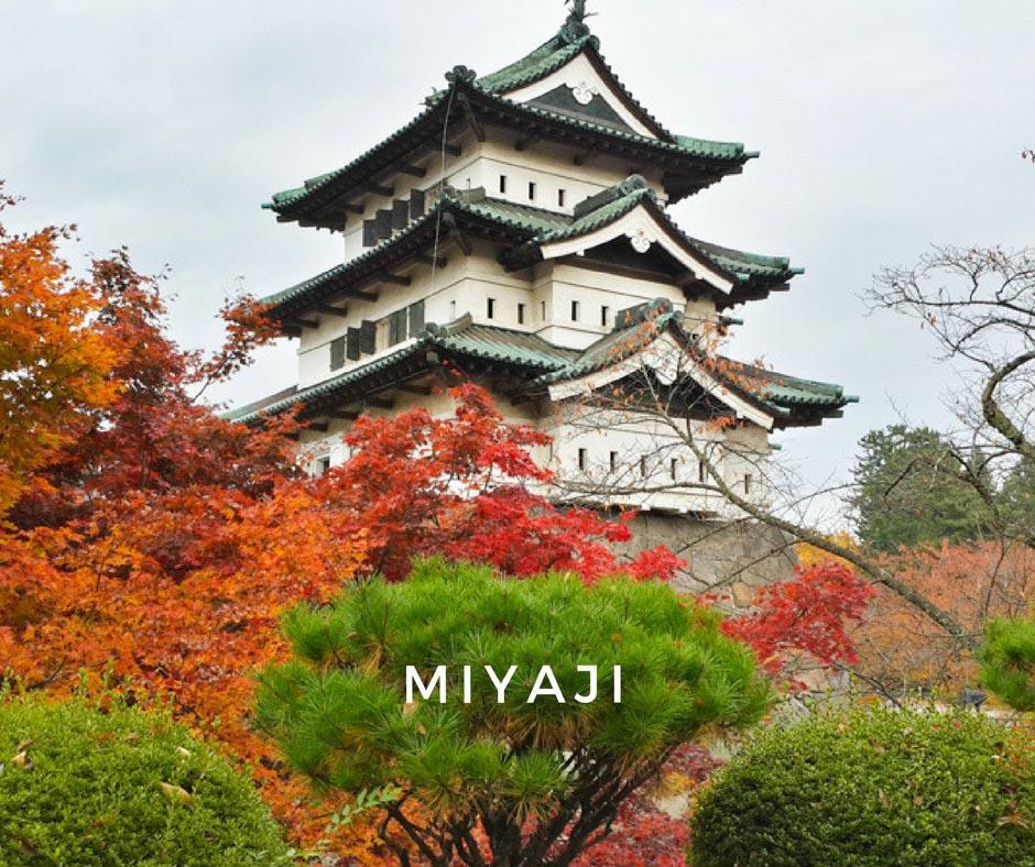 พยากรณ์ใบไม้เปลี่ยนสี Miyaji