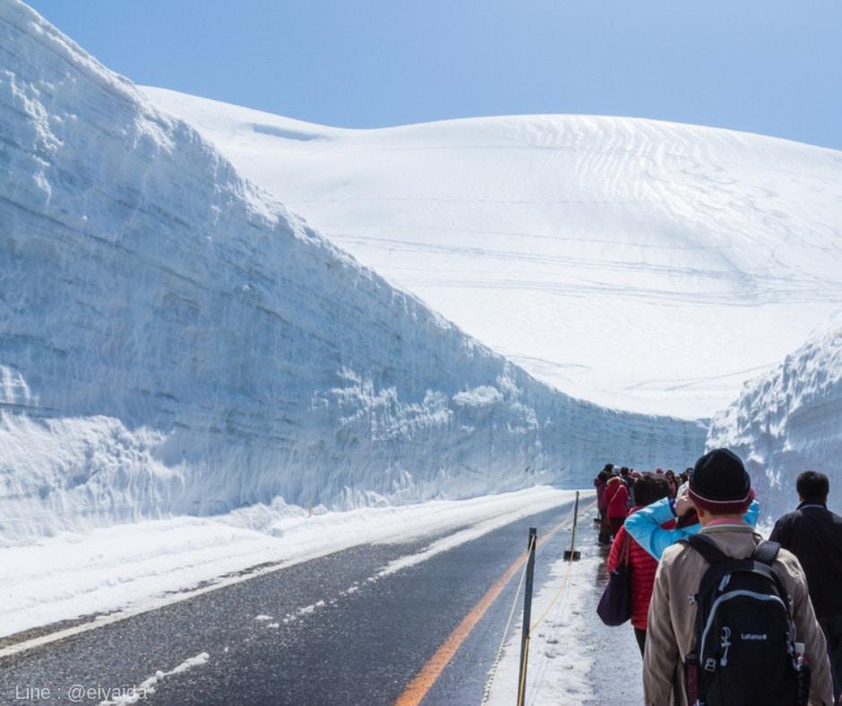 กำแพงน้ำแข็ง ที่โทยาม่า