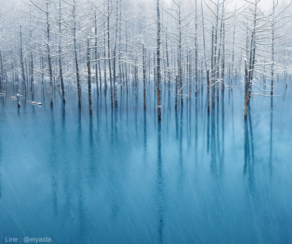Winter View at Blue Pond