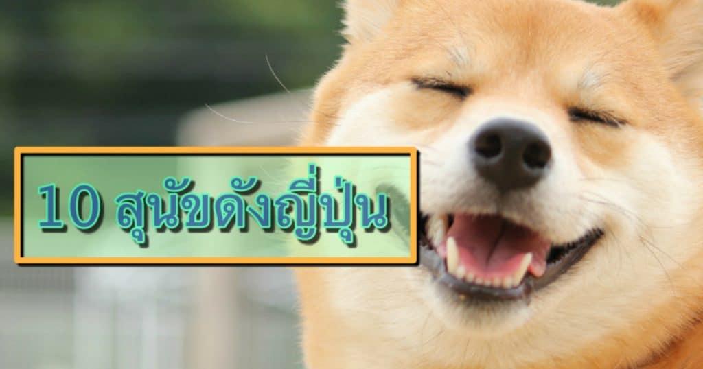 10 สุนัขสายพันธ์ญี่ปุ่นที่นิยม ทั้งในญี่ปุ่นและต่างประเทศ