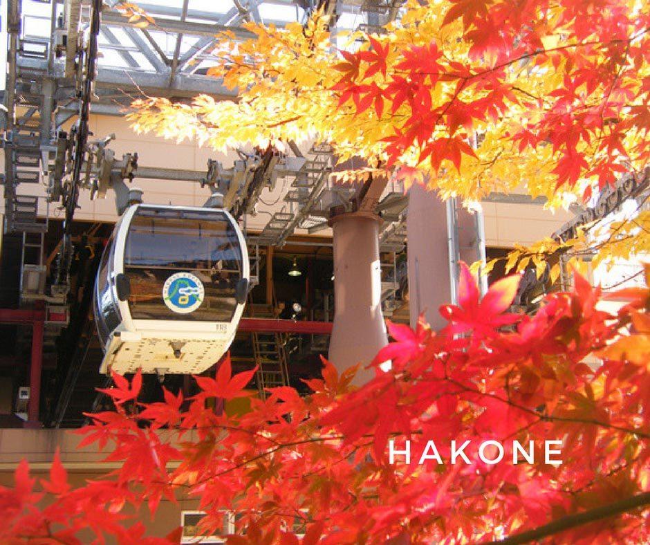 พยากรณ์ใบไม้เปลี่ยนสี Hakone